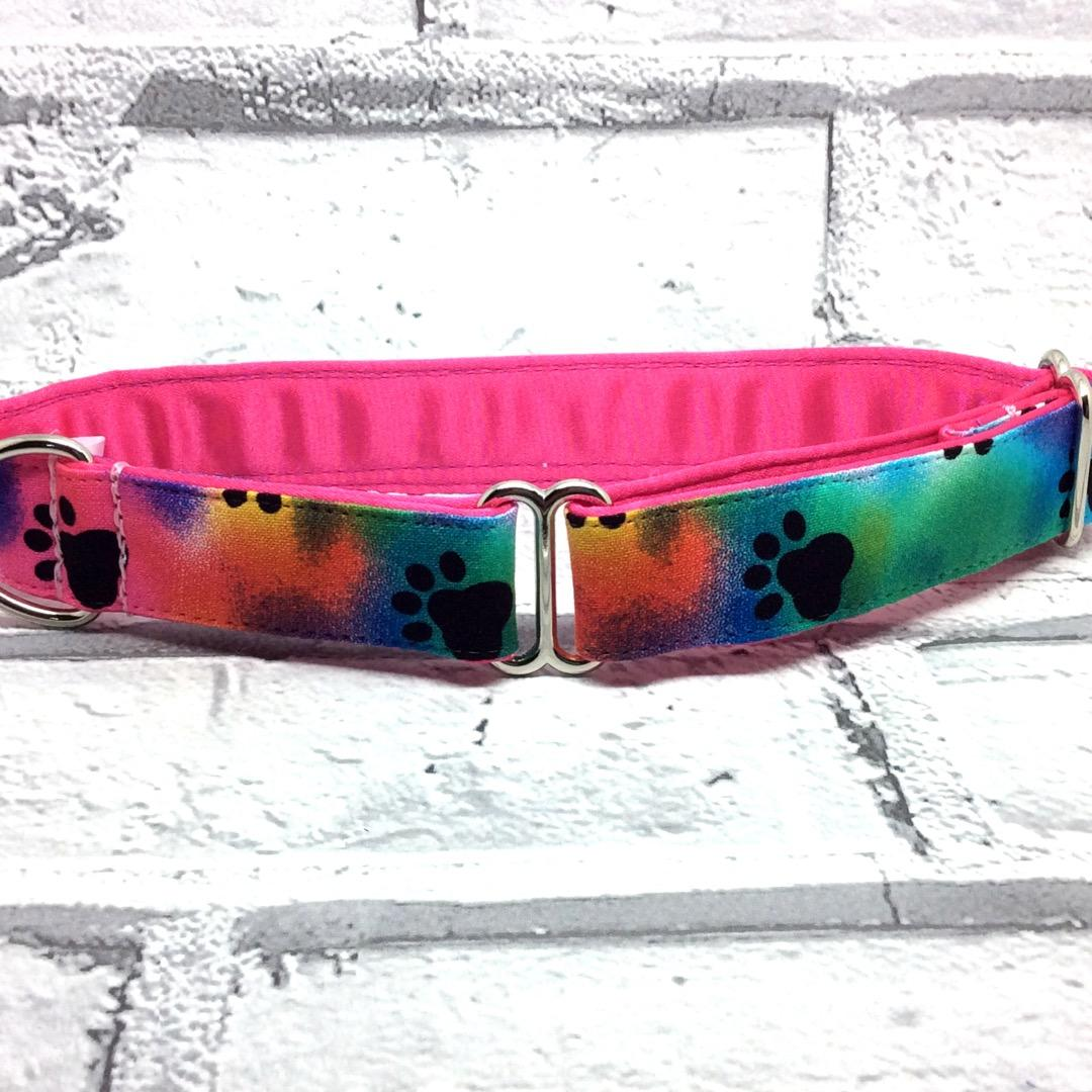 Rainbow paw prints, Greyhound collars,