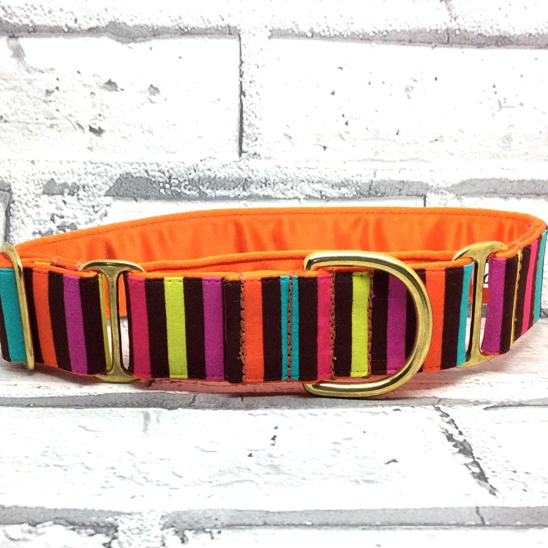 Candy stripe greyhound Martingale collar