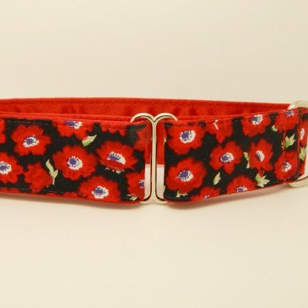 Poppies, red, dog collar, martingale, house collar