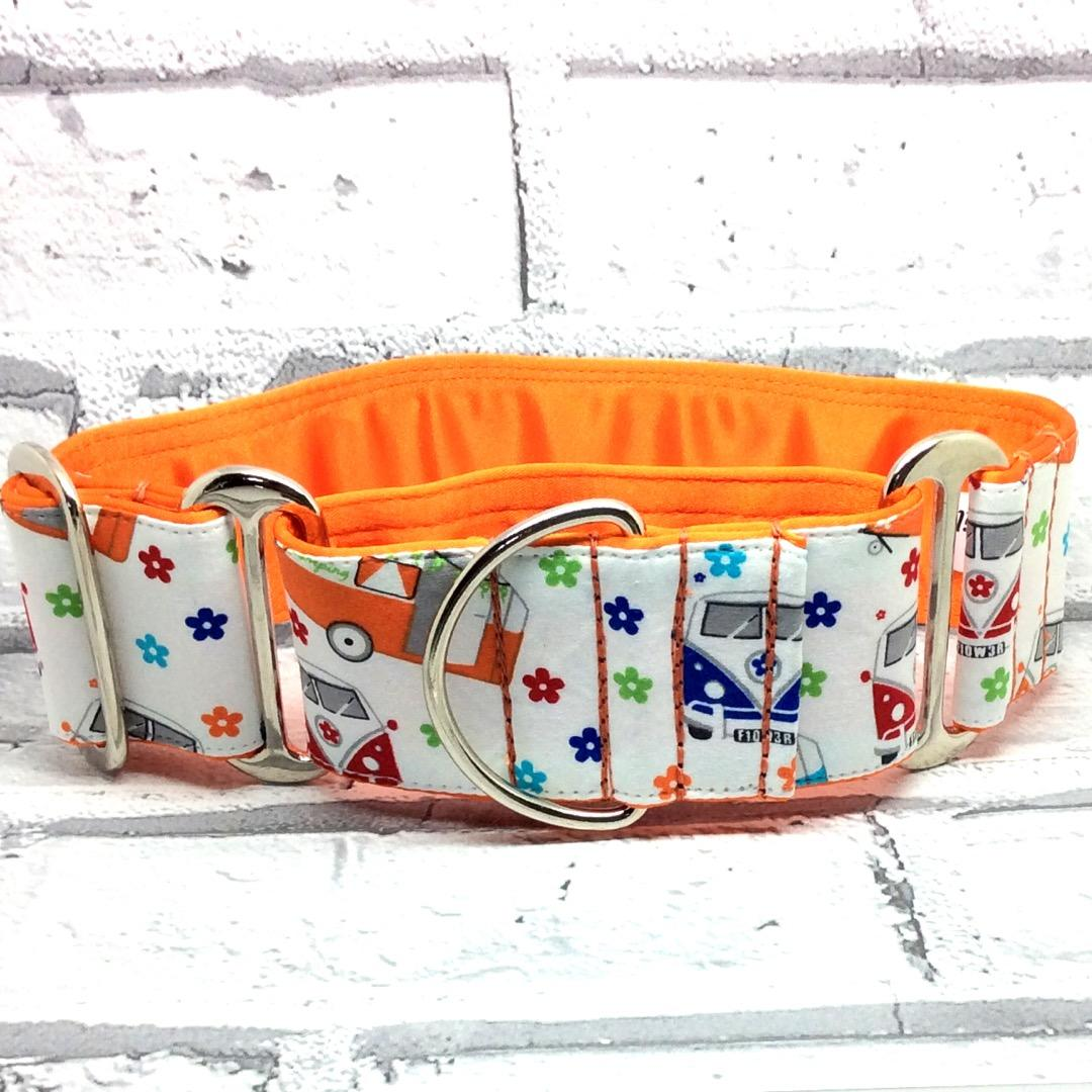 Camper Vans greyhound Martingale collar