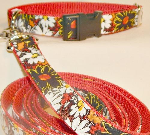 Deep Daisies Collar, daisies, orange, black,