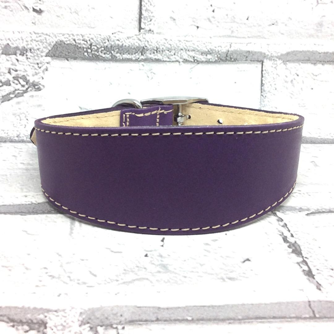 Purple leather whippet collar