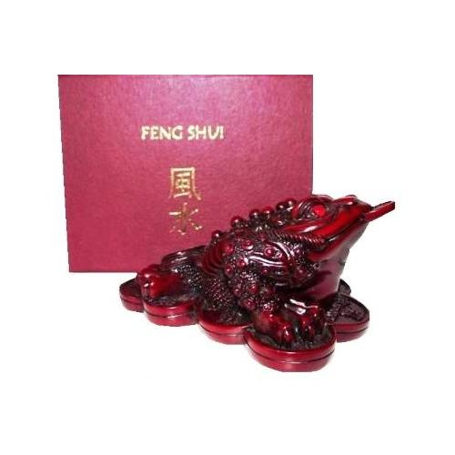 Red Chinese money frog in a feng shui gift box,