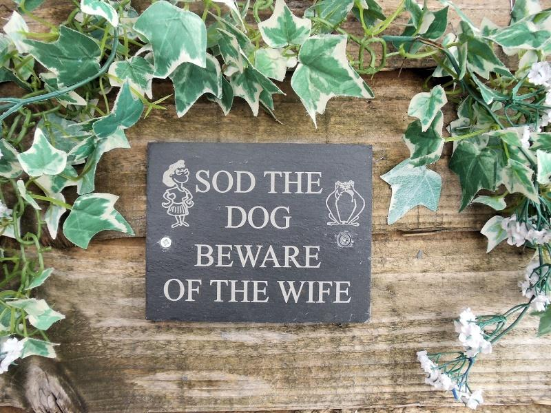 sod the dog, beware of the wife