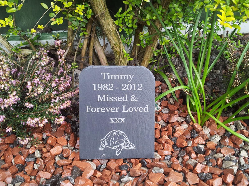slate plaque for tortoise