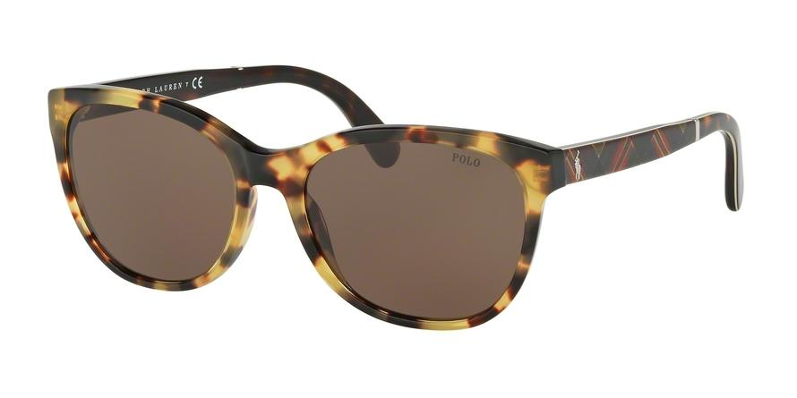 Polo  PH4117 500473  Butterfly Sunglasses picture 1