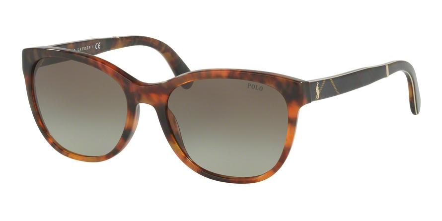 Polo  PH4117 50178E  Butterfly Sunglasses picture 1