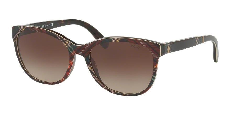 Polo  PH4117 562213  Butterfly Sunglasses picture 1