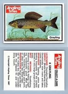 Chub #6 Angling Times Fish 1987 Collect-A-Card