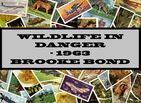 Wildlife In Danger - 1963 Brooke Bond