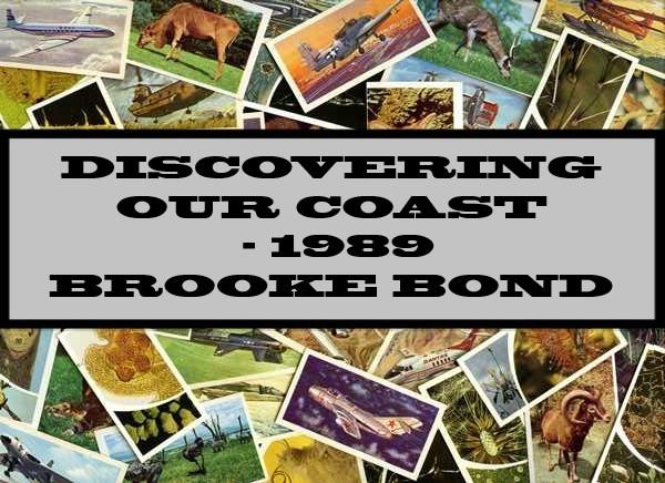 Discovering Our Coast - 1989 Brooke Bond