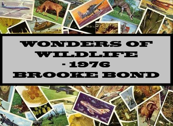 Wonders Of Wildlife - 1976 Brooke Bond