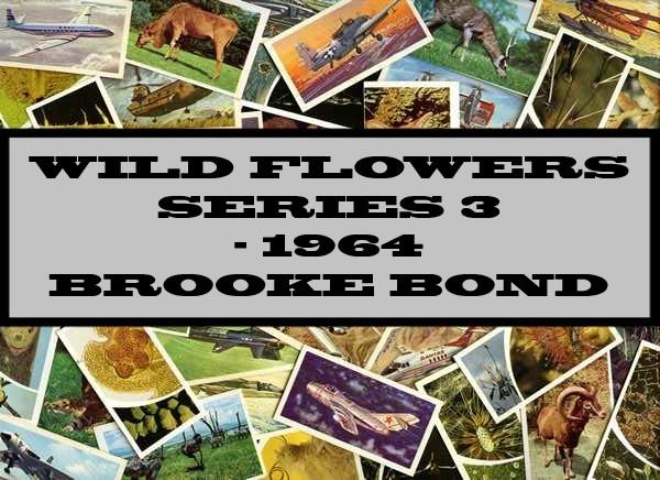 Wild Flowers Series 3 - 1964 Brooke Bond