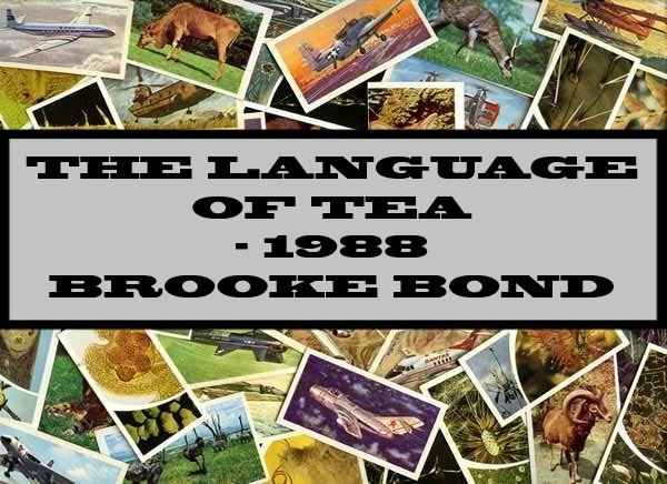 The Language Of Tea - 1988 Brooke Bond