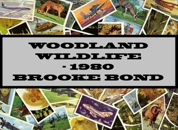 Woodland Wildlife - 1980 Brooke Bond