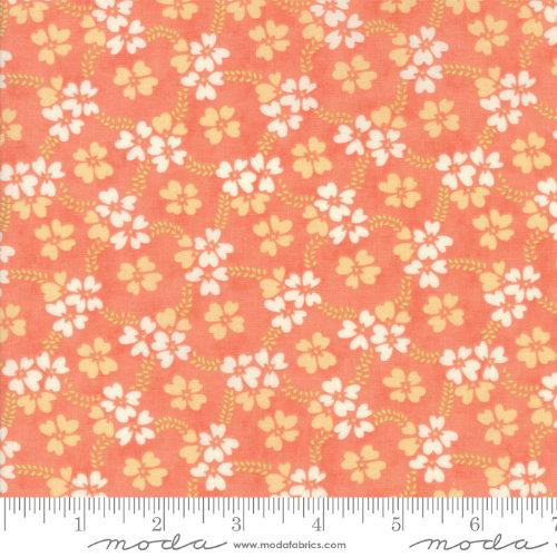 Moda Fabric - Ella and Ollie - Apricot Daisy Rings 20302-12