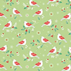 Dashwood Studio - Winter Wonderland - Birds on Light Green