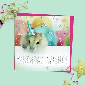 Hamster Themed Birthday Card Alongside Its Magenta Envelope