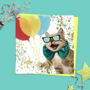 Party Cat Quirky Birthday Card Alongside Its Yellow Envelope