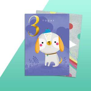 Age 3 Cute Dog Birthday Card Alongside Its Rainbow Envelope