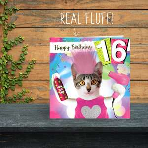 Age 16 Cat Birthday Card Sitting On The Shelf