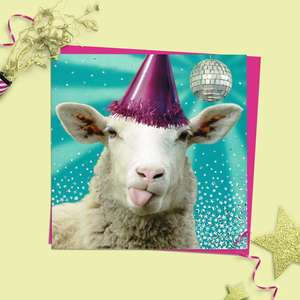 Disco Sheep Quirky Birthday Card Alongside Its Magenta Envelope
