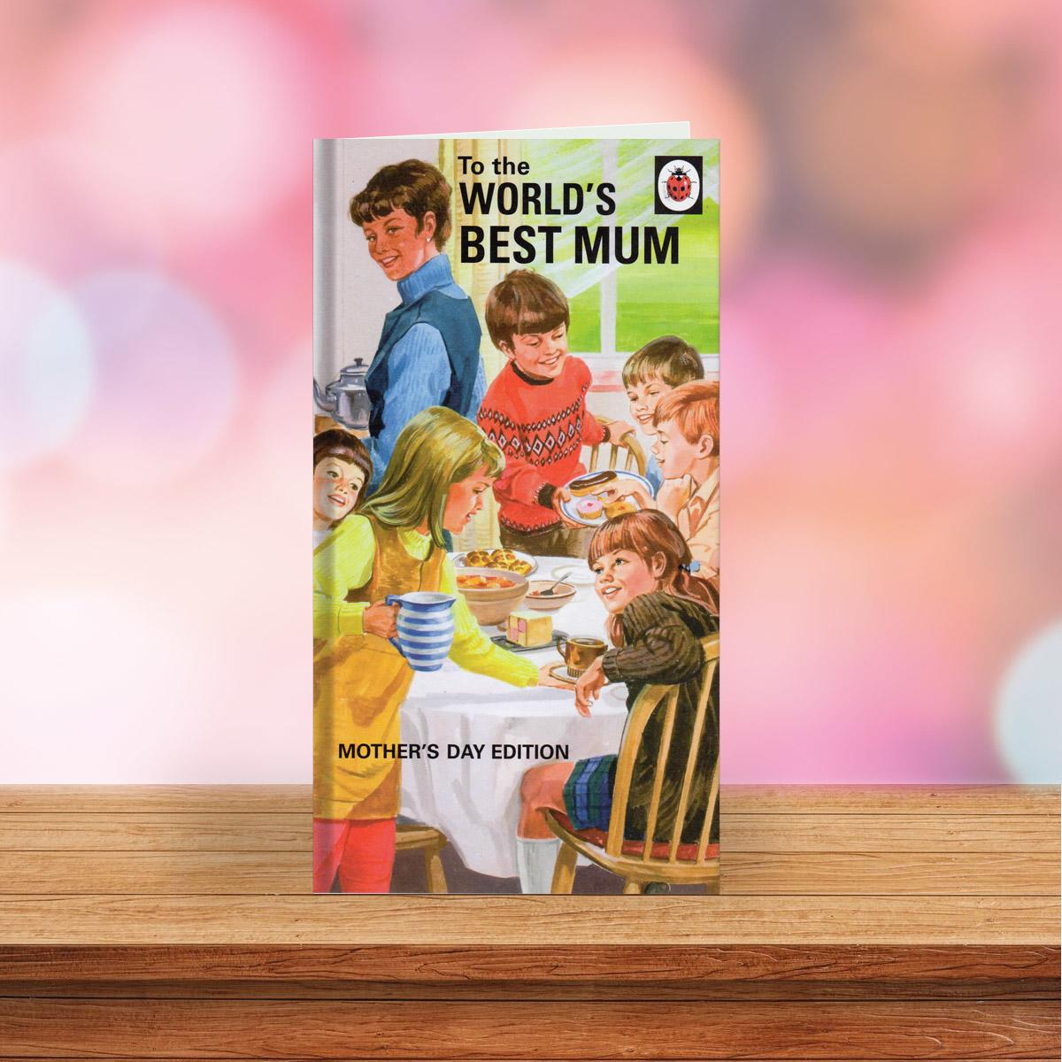 Ladybird Book Mothers Day Card Sitting On A Display Shelf