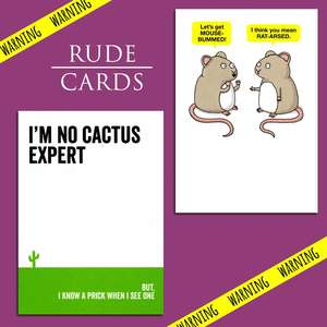 A Selection Of Cards To Show The Depth Of Range In Our Rude Cards Section