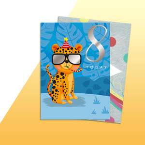 Age 8 Cheetah Themed Birthday Card Alongside Its Rainbow Envelope