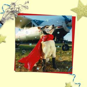 Pilot Dog Birthday Card Alongside Its Red Envelope