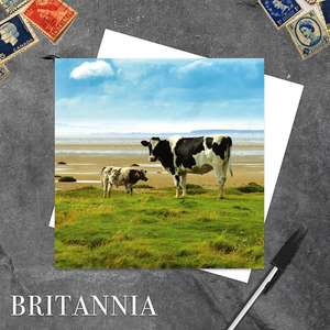 Holstein Friesians Solway Coast Blank Greeting Card