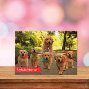 Golden Retrievers Mothers Day Card Sitting On A Display Shelf