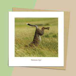 Beautiful Photographic Leopard Image Complete With Brilliant Tag Line