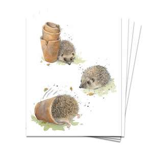 Hedgehog Themed Pack Of 4 Notelets Displayed