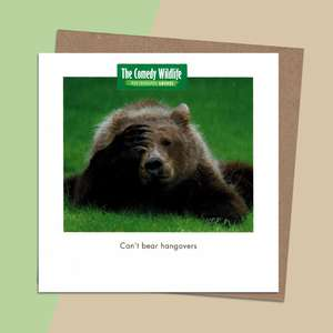 Beautiful Photography Of A Brown Bear Alongside A Quirky Tag Line