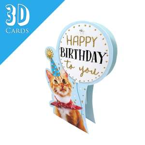 Birthday Cat Themed 3D Card Alongside Its Teal Envelope