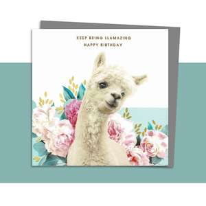 Llama Themed Birthday Card Alongside Its Dark Grey Envelope