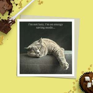 "Photographic Image Of A Grey Cat Laying On A Sofa With The Caption- "" I'm Not Lazy, I'm On Energy Saving Mode..."". Complete With Stone Coloured Envelope And Blank Inside For Own Message"