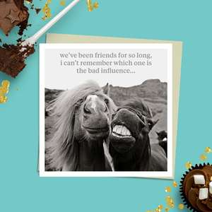To The Point Humorous Black and White Photographic Card Showing Two Close Up Horses, One With Teeth Showing. Caption Reads: 'we've been friends for so long, i can't remember which one of us is the bad influence...' Blank Inside  For Own Message. Complete With Stone Coloured Envelope