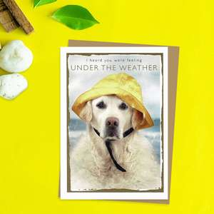 Feeling Under the Weather Dog In Sou'Wester Get Well Card Front Image