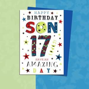 Son Age 17 Birthday Card Sitting On A Display Shelf