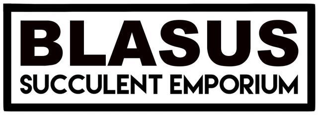 Blasus Succulent Emporium