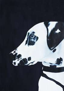 Gaston Dalmation Dog Portrait