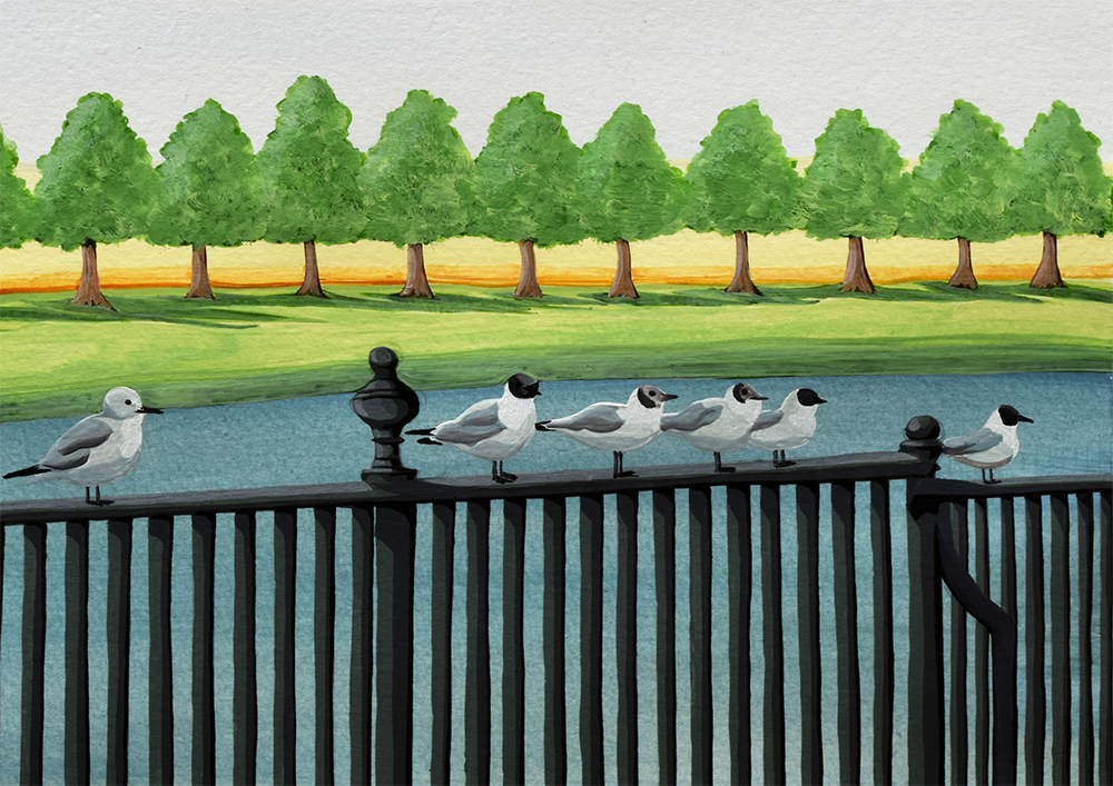 Seagulls perching on a railing