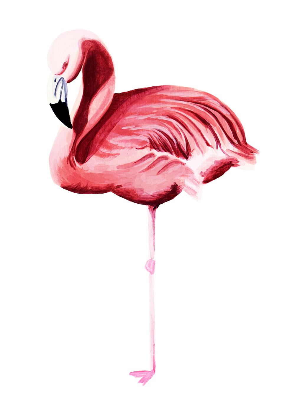 Flamingo art print by Lucinda Watt