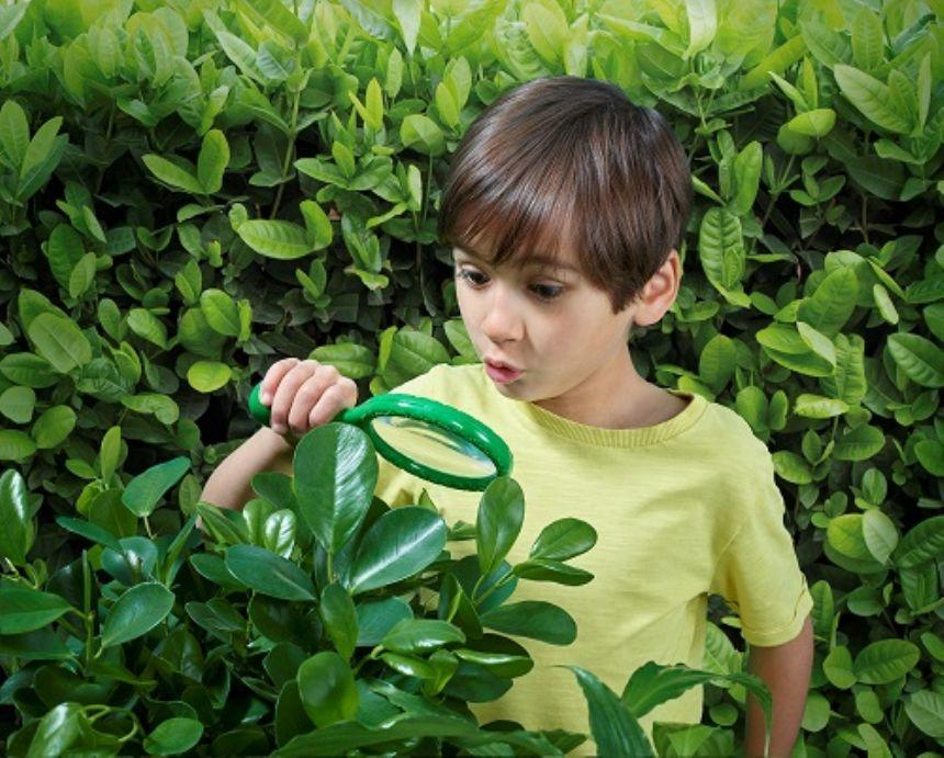 Boy outside with a green magnifying glass examining nature.