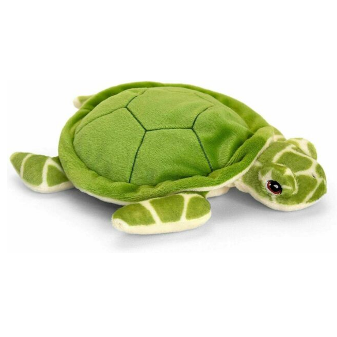 Green cuddly soft turtle toy.