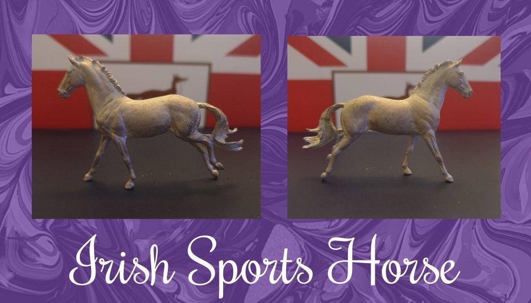 irish-sports-horse.jpg