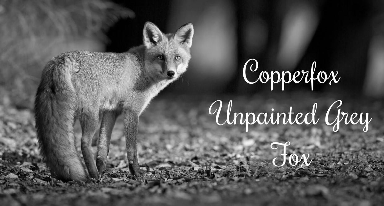 copperfox-unpainted-grey-fox.jpg