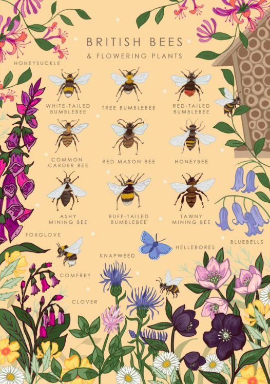 British Bees card